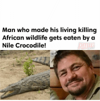 Click, Crime, and Memes: Man who made his living killing  African wildlife gets eaten by a  Nile Crocodile!  HIPHOP ScottVanZyl was killed last week on the banks of the Limpopo river, said Sakkie Louwrens, director of a SouthAfrican crime-fighting NGO. ________________ Mr Van Zyl disappeared during a hunting safari last week. ________________ His death is the latest in a series of fatal crocodile attacks in Zimbabwe. ________________ MORE AT PMWHIPHOP.COM CLICK LINK IN BIO