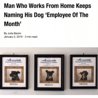 For those of you unaware, we have a news account called @JerryNews. Give it a follow to stay up to date on far less important updates then this.: Man Who Works From Home Keeps  Naming His Dog 'Employee Of The  Month  By Julia Banim  January 2, 2019 3 min read  Accuride  Accuride  Accuride  Employee Of The Quarter  02-2016  Employee Of The Quarter  032018  Employee Of The Quarter  04-2016  MEEKA  MEEKA  MEEKA For those of you unaware, we have a news account called @JerryNews. Give it a follow to stay up to date on far less important updates then this.