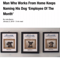 Home, MeIRL, and Dog: Man Who Works From Home Keeps  Naming His Dog 'Employee Of The  Month'  By Julia Banim  January 2, 2019 3 min read  Employee O. The Quarte,  Employee Of The Quarter  MEEKA  MEEKA  MEEKA meirl