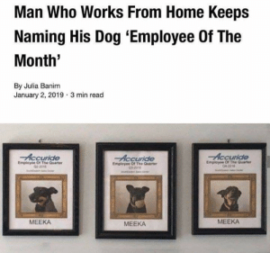 Home, Irl, and Dog IRL: Man Who Works From Home Keeps  Naming His Dog 'Employee Of The  Month'  By Julia Banim  January 2, 2019 3 min read  Accuride  ride  Accuride  Employee Of The Quarter  02-3016  Employee Of The Quarter  03-20%  Employee Of The Quarter  04-2916  MEEKA  MEEKA  MEEKA woof irl