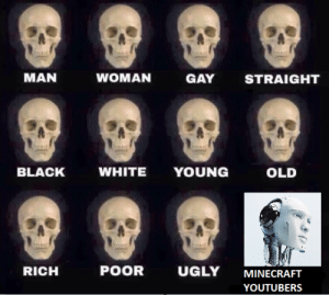 Minecraft, Ugly, and Black: MAN  WOMAN  GAY  STRAIGHT  BLACK  WHITE YOUNG  OLD  RICH  POOR  UGLY MINECRAFT  YOUTUBERS
