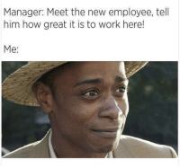 Work, How, and Him: Manager: Meet the new employee, tell  him how great it is to work here!  Me
