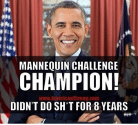 BOOM!: MANNEQUIN CHALLENGE  CHAMPION!  www AnnericanStrong.com  DIDN'T DO SH T FOR 8 YEARS BOOM!