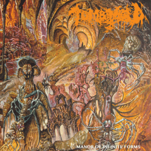 higher-hammers-of-hate:  TOMB MOLD: MANOR OF NEINITE FORMS higher-hammers-of-hate:  TOMB MOLD