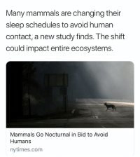 I'm human and hate humans so I can't even imagine how much non humans hate humans I'd do the same thing lol: Many mammals are changing their  sleep schedules to avoid human  contact, a new study finds. The shift  could impact entire ecosystems.  Mammals Go Nocturnal in Bid to Avoid  Humans  nytimes.com I'm human and hate humans so I can't even imagine how much non humans hate humans I'd do the same thing lol