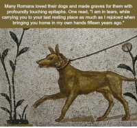 "Dogs, Home, and Graves: Many Romans loved their dogs and made graves for them with  profoundly touching epitaphs. One read, ""I am in tears, while  carrying you to your last resting place as much as I rejoiced when  ringing you home in my own hands fifteen years ago. Eternal buddies"