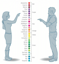 How men and women see colours https://t.co/1s4K8ogalM: Maraschino  rapePurple  Strawberry  Pink  Orange  Yellow  Honeydew  Green  Blue  Turquoise How men and women see colours https://t.co/1s4K8ogalM