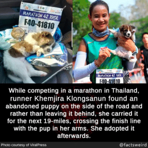 What a wonderful person: MARATHON 42.195k  30  F40-41810  N  MARATHON 42.195K  F40-41810  While competing in a marathon in Thailand,  runner Khemjira Klongsanun found an  abandoned puppy on the side of the road and  rather than leaving it behind, she carried it  for the next 19-miles, crossing the finish line  with the pup in her arms. She adopted it  afterwards.  @factsweird  Photo courtesy of ViralPress What a wonderful person