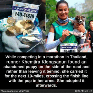 What a wonderful person: MARATHON 42.195K  F40-41810  MARATHON 42.195k  F40-41810  While competing in a marathon in Thailand,  runner Khemjira Klongsanun found an  abandoned puppy on the side of the road and  rather than leaving it behind, she carried it  for the next 19-miles, crossing the finish line  with the pup in her arms. She adopted it  afterwards.  @factsweird  Photo courtesy of ViralPress What a wonderful person