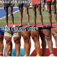 😳😂WHICH DO YOU WANT? Founder 👉: @king_khieu. 1 - Marathon runners' legs. 2 - Track cyclists' legs. 1 or 2? Vote 👇 below! Thoughts? 🤔Opinions? What do you guys think? COMMENT BELOW! Athletes: Unknown. Please tag below if known. TAG SOMEONE who needs to lift! _________________ Looking for unique gym clothes? Use our 10% discount code: LEGIONS10🔑 on Ape Athletics 🦍 fitness apparel! The link is in our 👆 bio! _________________ Principal 🔥 account: @fitness_legions. Facebook ✅ page: Legions Production. @legions_production🏆🏆🏆. . . . . . . . run running runner athlete athletes athletic sport sports calves quadzilla striations quads quad quadriceps hamstrings glutes backworkout back backday chest chestday chestworkout traps delts shoulder shoulders pecs shreds shred shredz 🔑Code: LEGIONS10.: MARATHON|RUNNERS, LEGS  A  TRACK CYCLISTS LEGS  IG -@ LEGIO  NS- BR O DUCTION 😳😂WHICH DO YOU WANT? Founder 👉: @king_khieu. 1 - Marathon runners' legs. 2 - Track cyclists' legs. 1 or 2? Vote 👇 below! Thoughts? 🤔Opinions? What do you guys think? COMMENT BELOW! Athletes: Unknown. Please tag below if known. TAG SOMEONE who needs to lift! _________________ Looking for unique gym clothes? Use our 10% discount code: LEGIONS10🔑 on Ape Athletics 🦍 fitness apparel! The link is in our 👆 bio! _________________ Principal 🔥 account: @fitness_legions. Facebook ✅ page: Legions Production. @legions_production🏆🏆🏆. . . . . . . . run running runner athlete athletes athletic sport sports calves quadzilla striations quads quad quadriceps hamstrings glutes backworkout back backday chest chestday chestworkout traps delts shoulder shoulders pecs shreds shred shredz 🔑Code: LEGIONS10.