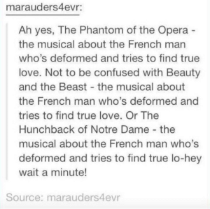 the beast: marauders4evr:  Ah yes, The Phantom of the Opera  the musical about the French man  who's deformed and tries to find true  love. Not to be confused with Beauty  and the Beast the musical about  the French man who's deformed and  tries to find true love. Or The  Hunchback of Notre Dame the  musical about the French man who's  deformed and tries to find true lo-hey  wait a minute!  Source: marauders4evr