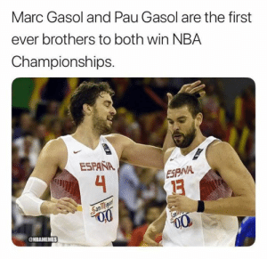 It runs in the family. 🏆🏆🏆: Marc Gasol and Pau Gasol are the first  ever brothers to both win NBA  Championships.  ESPAÑA  4  ESPNA  San migunt  Sanlie  NBAMEMES It runs in the family. 🏆🏆🏆