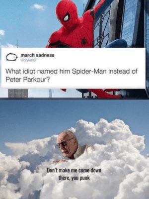 Spider, SpiderMan, and Parkour: march sadness  @crylenol  What idiot named him Spider-Man instead of  Peter Parkour?  Don't make me come down  there, you punk credits to u/filip1802
