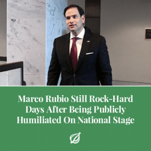 "cnn.com, Doctor, and Friday: Marco Rubio Still Rock-Hard  Days After Being Publicly  Humiliated On National Stage  (g theonion:WASHINGTON—Saying the CNN town hall debate had left him sexually aroused in a way he hadn't experienced since his failed 2016 presidential run, Florida senator Marco Rubio admitted Friday that he was still rock-hard a couple days after being publicly humiliated on the national stage. ""Oh, fuck yes, I had forgotten how good it hurts to be degraded on live television for everyone to see,"" said Rubio, noting that the Parkland shooting survivors taking him to task for his complicity combined with the booing crowd gave him a raging erection more turgid than the one he had when Chris Christie totally destroyed him during a republican debate two years ago. ""It was so intense when those town hall participants asked me to stop accepting donations from the NRA and I just squirmed around like the naughty boy I am. Then when Jake Tapper told everyone to settle down, I just about creamed my pants right there on stage. Mmm, I bet Americans are so disgusted with me. Jesus, I think I'm gonna blow a load."" Rubio added that if the survivors don't stop roasting on Twitter soon, he would have to visit a doctor for his aching cock."