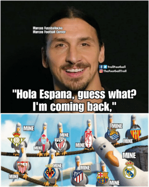 "Where will Zlatan play in 2020? https://t.co/68LgM47eef: Marcos Fussballecke  Marcos Football Corner  fTrollFootball  O TheFootballTroll  ""Hola Espana, guess what?  I'm coming back,  MINE  MINE  MINE  ATHLETIC CLUB  MINE  MINE  MINE  MINE  MINE  MINE  EVB  MINE  MINE Where will Zlatan play in 2020? https://t.co/68LgM47eef"