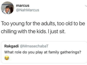 Dank, Family, and Memes: marcus  @NahMarcus  Too young for the adults, too old to be  chilling with the kids. Ijust sit.  Rakgadi @MmasechabaT  What role do you play at family gatherings? The sitting role. by randomuser9061 MORE MEMES