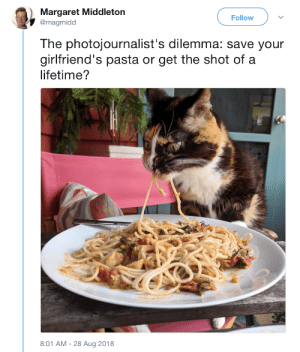 Day late first cakeday dump, excerpts from the first dump I ever favorited!: Margaret Middleton  @magmidd  Follow  The photojournalist's dilemma: save your  girlfriend's pasta or get the shot of a  lifetime?  8:01 AM-28 Aug 2018 Day late first cakeday dump, excerpts from the first dump I ever favorited!