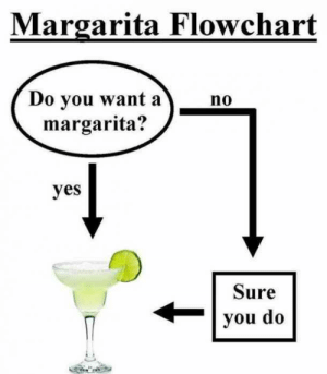 25 Margarita Memes & Tequila Quotes To Help You Celebrate National Margarita Day: Margarita Flowchart  Do you want ano  margarita?  yes  Sure  |you do 25 Margarita Memes & Tequila Quotes To Help You Celebrate National Margarita Day