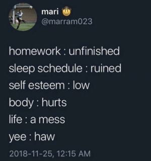 Life, Yee, and Schedule: mari  @marram023  homework: unfinished  sleep schedule: ruined  self esteem: low  body: hurts  life: a mess  yee: haw  2018-11-25, 12:15 AM Meirl