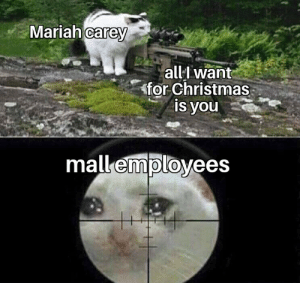 They deserve a better life: Mariah carey  all want  for Christmas  is you  mall employees They deserve a better life