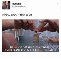 So tjred: Mariana  @_meowriana  I think about this a lot  THE HARDEST PART ABOUT BEING VEGAN IS  HAVING TO WAKE UP AT 5AM TO MILK ALL THE ALMONDS So tjred