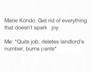 Spark: Marie Kondo: Get rid of everything  that doesn't spark joy  Me: *Quits job, deletes landlord's  number, burns pants*