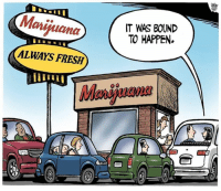 Memes, 🤖, and Bound: Marihuana  ALWAYS FRESH  IT WAS BOUND  TO HAPPEN.