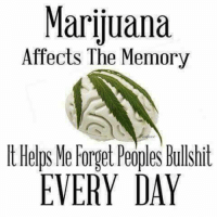 Memes, Marijuana, and Helps: Marijuana  Affects The Memory  t Helps Ne Forget Peoples Bullhit  EVERY DAY