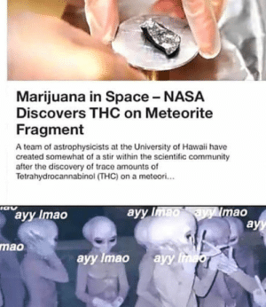 Ayy lmao: Marijuana in Space NASA  Discovers THC on Meteorite  Fragment  A team of astrophysicists at the University of Hawaii have  created somewhat of a stir within the scientific community  after the discovery of trace amounts of  Tetrahydrocannabinol (THC) on a meteori...  ayy Imao  ayy  mao  mao  ayy Imao ayy Ayy lmao