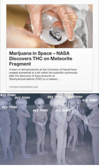 Ayy LMAO, Blackpeopletwitter, and Community: Marijuana in Space-NASA  Discovers THC on Meteorite  Fragment  A team of astrophysicists at the University of Hawaii have  created somewhat of a stir within the scientific community  after the discovery of trace amounts of  Tetrahydrocannabinol ITHC) on a meteori...  THEHEALTHDISORDER.COM   ayy lmao  ayy Imao ayy mao  ayy Imao  ayy lmao  ayy lmao  ayy lmao  a  lima https://t.co/QqMOvlGeQj