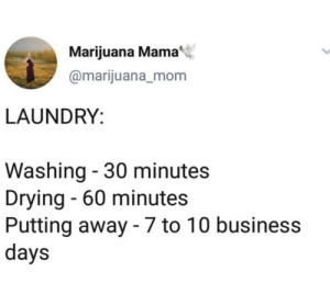 Laundry, Business, and Marijuana: Marijuana Mama  @marijuana_mom  LAUNDRY:  Washing - 30 minutes  Drying - 60 minutes  Putting away - 7 to 10 business  days me_irl
