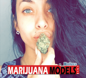 """Instagram, Love, and Tumblr: MARIJUANA MODELS marijuanamodels:    Featured Model: __Knives via Instagram  Showing Love! 🔥😍   """"Just showing love to your page! Love itttt!!! BlueBerry Yum Yum!""""   Tag:#RealMarijuanaModels or DM us to be Featured on MarijuanaModels.com  Background!"""
