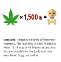 Memes, Snoop, and Snoop Dogg: Marijuana- Things are slightly different with  marijuana. The fatal dose is 1,500 lb, smoked  within 15 minutes or 48 lb eaten at one time.  And you probably won't enjoy it at all. Not  even Snoop Dogg can do that. mariwana kills 1 in every 2 people who tries it 🤧🤧🤧🤧🤧😩😩😩😩☠️☠️don't shoot up Marawana kids