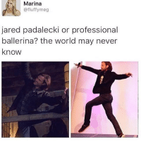 Memes, Jared, and Jared Padalecki: Marina  @fluffy meg  jared padalecki or professional  ballerina? the world may never  know QOTD - what are you getting for Christmas? 😄❤️ AOTD - a lot of fandom merch 😂