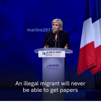 """Memes, 🤖, and Marine Le Pen: marine 2017  MARINE Presidente  MARINE  An illegal migrant will never  be able to get papers """"All agree the EU is a failure.""""  French far-right leader Marine Le Pen launches her presidential campaign with the promise of an in/out referendum within six months of her election."""