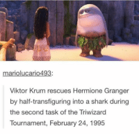 triwizard tournament: mariolucario 493:  Viktor Krum rescues Hermione Granger  by half-transfiguring into a shark during  the second task of the Triwizard  Tournament, February 24, 1995