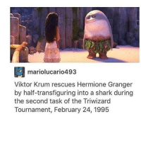 viktor krum: mariolucario4 93  Viktor Krum rescues Hermione Granger  by half-transfiguring into a shark during  the second task of the Triwizard  Tournament, February 24, 1995