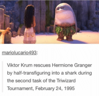 ~Loony Snitch: mariolucario493  Viktor Krum rescues Hermione Granger  by half-transfiguring into a shark during  the second task of the Triwizard  Tournament, February 24, 1995 ~Loony Snitch