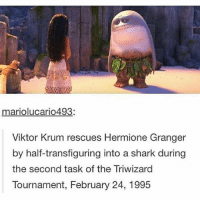 ~Winglock: mariolucario493:  Viktor Krum rescues Hermione Granger  by half-transfiguring into a shark during  the second task of the Triwizard  Tournament, February 24, 1995 ~Winglock