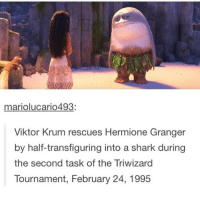 I accidentally deleted my 200k post so I'll repost it tomorrow 🙃🙃: mariolucario493  Viktor Krum rescues Hermione Granger  by half-transfiguring into a shark during  the second task of the Triwizard  Tournament, February 24, 1995 I accidentally deleted my 200k post so I'll repost it tomorrow 🙃🙃