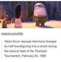 triwizard tournament: mariolucario493  Viktor Krum rescues Hermione Granger  by half-transfiguring into a shark during  the second task of the Triwizard  Tournament, February 24, 1995
