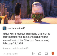 Hermione, Shark, and Humans of Tumblr: mariolucario493  Viktor Krum rescues Hermione Granger by  half-transfiguring into a shark during the  second task of the Triwizard Tournament,  February 24, 1995  Source: mariolucario493  141,532 notes