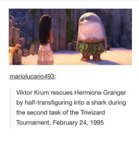Hermione, Memes, and Shark: mariolucario493:  Viktor Krum rescues Hermione Granger  by half-transfiguring into a shark during  the second task of the Triwizard  Tournament, February 24, 1995 I CHOKED