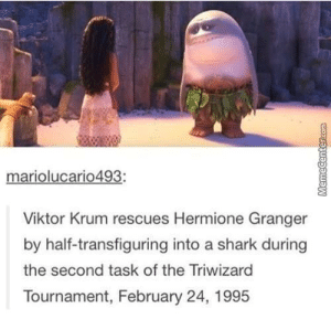 Victor Krum and Hermione Granger - Triwizard Tournament (1995): mariolucario493:  Viktor Krum rescues Hermione Granger  by half-transfiguring into a shark during  the second task of the Triwizard  Tournament, February 24, 1995 Victor Krum and Hermione Granger - Triwizard Tournament (1995)