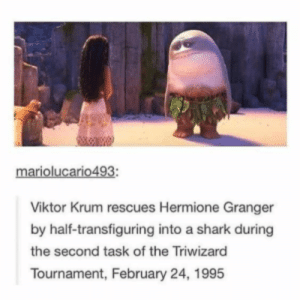 Hermione, Shark, and Viktor: mariolucario493:  Viktor Krum rescues Hermione Granger  by half-transfiguring into a shark during  the second task of the Triwizard  Tournament, February 24, 1995