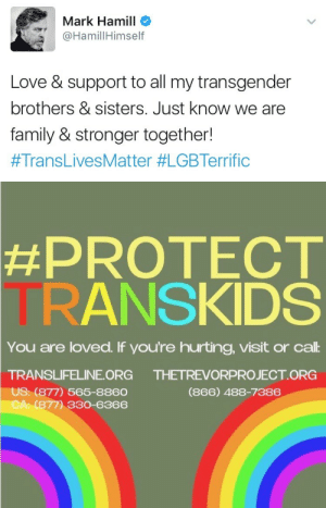 i-am-an-iron-fan:BLESSED POST. REBLOG TO LET EVERY TRANS PERSON KNOW THAT LUKE SKYWALKER KILLS TERFS ON SITE.: Mark Hamill  HamillHimself  Love & support to all my transgender  brothers & sisters. Just know we are  family & stronger together!  #TransLivesMatter #LGBTerrific   #PROTECT  TRANSKIDS  You are loved. If you're hurting, visit or cal:  TRANSLIFELINE ORG  US: (877) 565-8860  CA: (877) 330-6366  THETREVORPROJECT ORG  (866) 488-7386 i-am-an-iron-fan:BLESSED POST. REBLOG TO LET EVERY TRANS PERSON KNOW THAT LUKE SKYWALKER KILLS TERFS ON SITE.