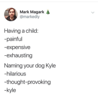 Dank Memes, Hilarious, and Thought: Mark Magark A  @markedly  Having a child  -painful  -expensive  -exhausting  Naming your dog Kyle  -hilarious  -thought-provoking  -kyle something to consider