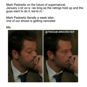 "Future, God, and Memes: Mark Pedowitz on the future of supernatural,  January 31st 2019: ""as long as the ratings hold up and the  guys want to do it, were in.""  Mark Pedowitz literally a week later:  one of our shows is getting canceled  Me:  @THESAM.WINCHESTER God I'm still scarred. I really hope it's @cw_legendsoftomorrow or @cw_the100 😫 ———————- —————————- supernatural spn sam dean samwinchester deanwinchester supernaturalseason14 jaredpadalecki jensenackles spnscenes cas castiel jackkline mishacollins alexandercalvert demondean nephilim marywinchester spn14 bobbysinger crowley lucifer kingofhell"