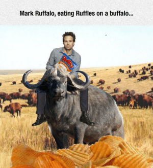srsfunny:This Is Possibly Modern Art: Mark Ruffalo, eating Ruffles on a buffalo... srsfunny:This Is Possibly Modern Art