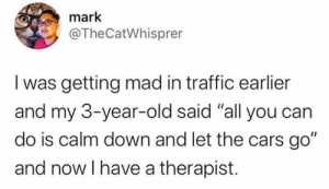 "Cars, Dank, and Traffic: mark  @TheCatWhisprer  I was getting mad in traffic earlier  and my 3-year-old said ""all you can  do is calm down and let the cars go""  and now I have a therapist. Calm down and let the cars go.  (via Twitter.com/TheCatWhisprer)"